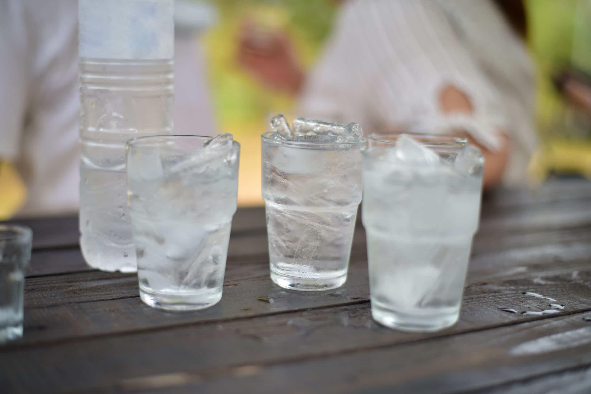 ハムスターに氷や冷水を与えても大丈夫?暑さ対策をしっかりしよう!